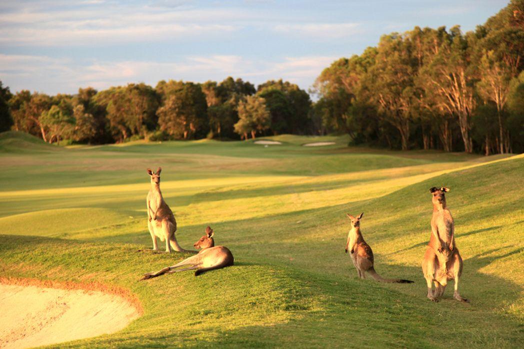 twin-waters-golf-club-feature.jpg